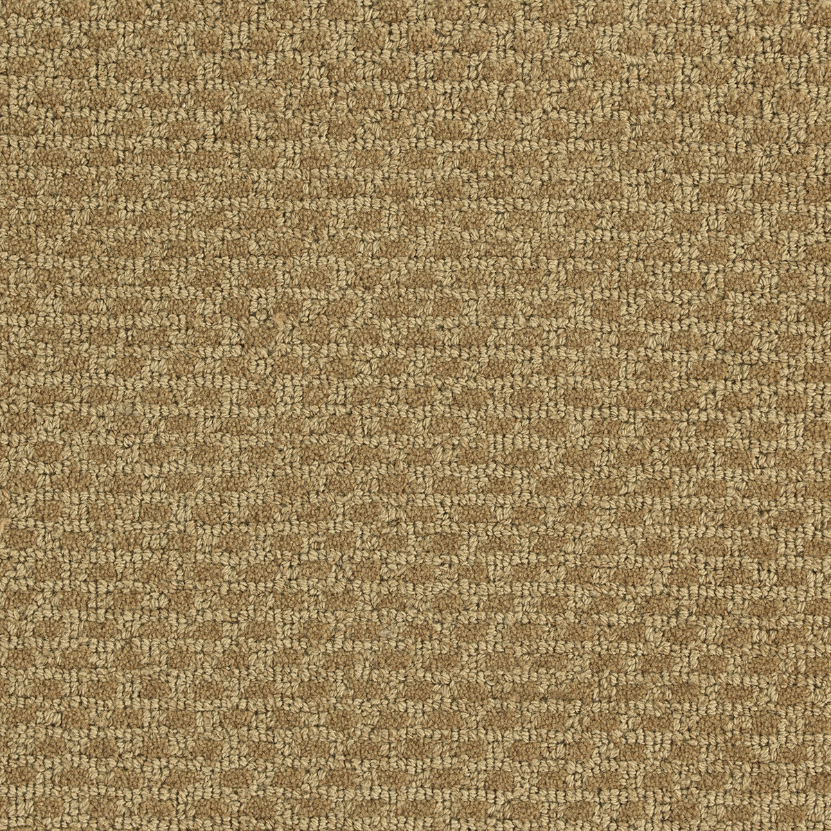 canvas-beige